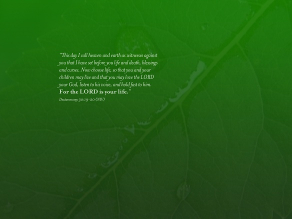 Scripture__xid-2575_1